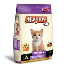 Magnus filhotes cat