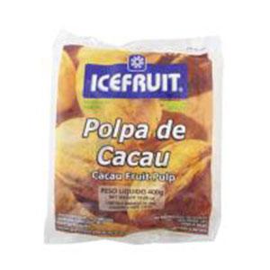 Polpa de fruta icefrut cacau 400g