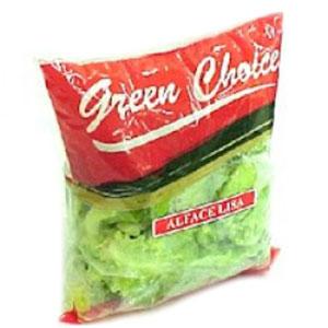 Green choice alface lisa